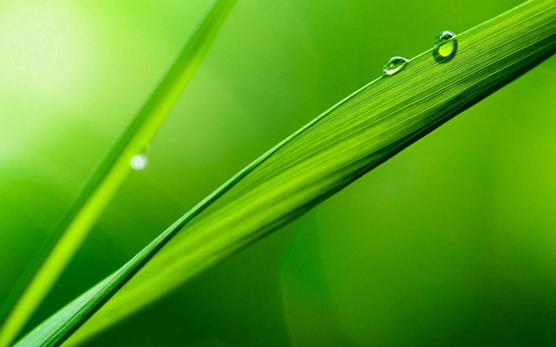 绿色低碳,节能减耗